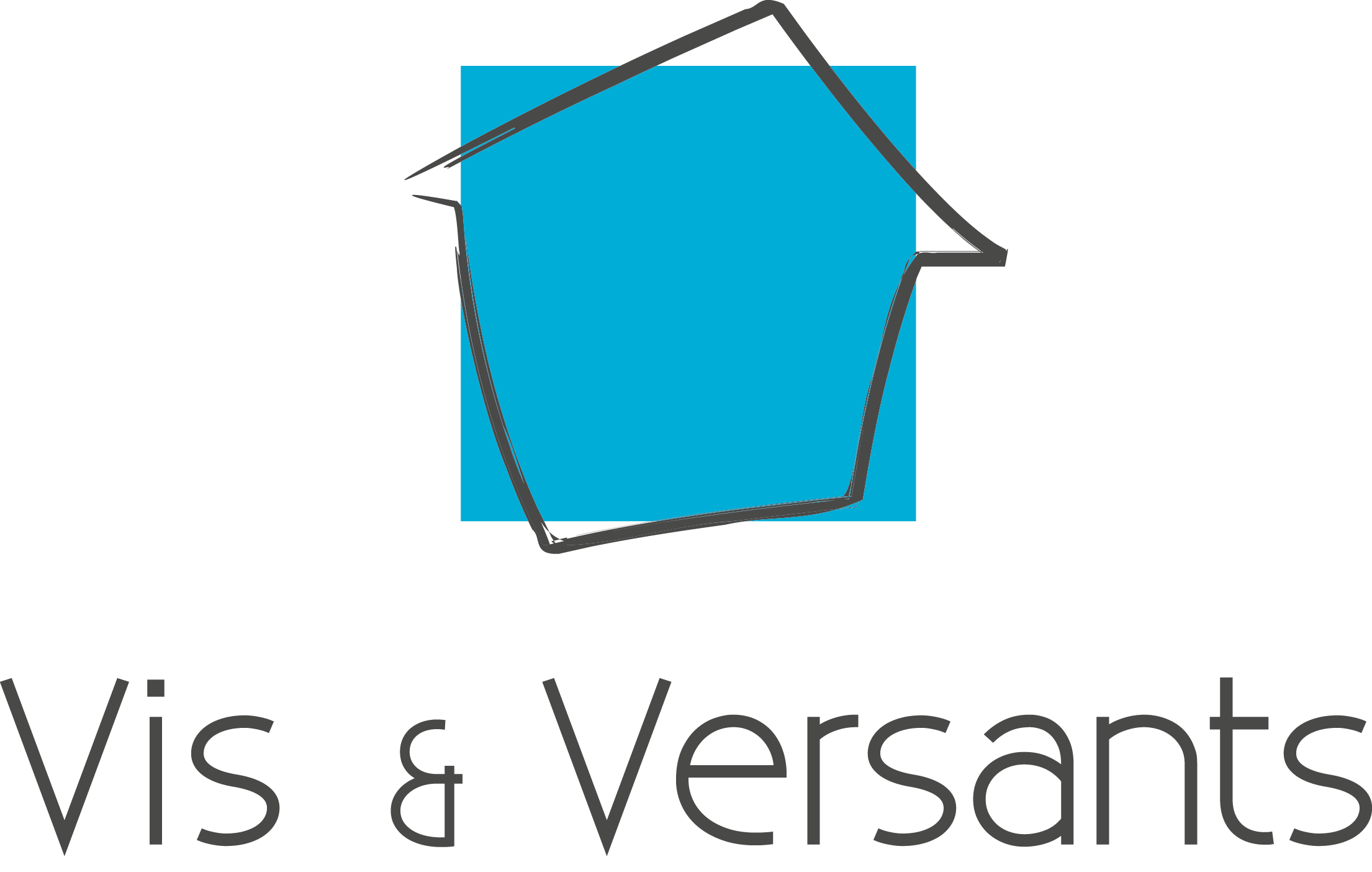 Vis & Versants Toitures